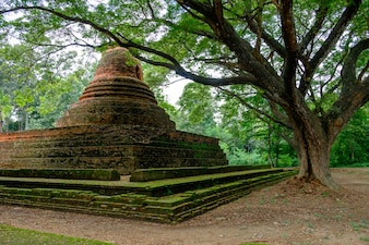 Pichit historical park with beautiful big tree, the old town of Thailand