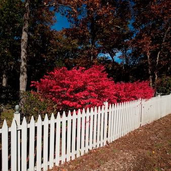 Picket fence in east hamptons