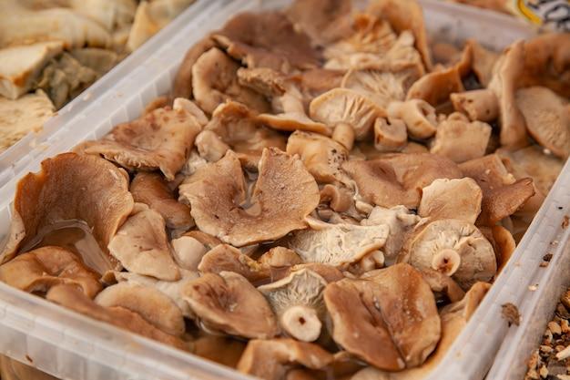 Pickled boletus mushrooms maslyata in a plastic bucket at the russian rural fair.