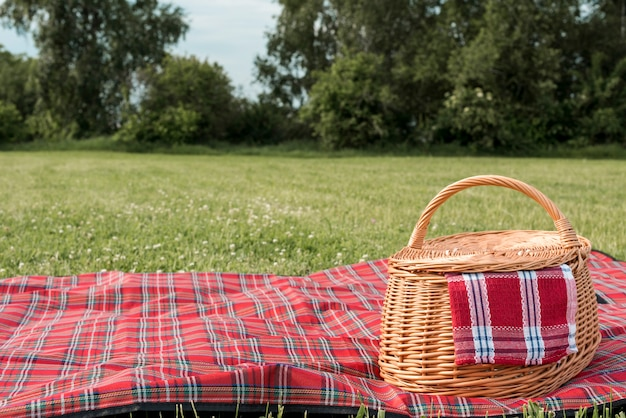 Picnic basket and blanket on park grass