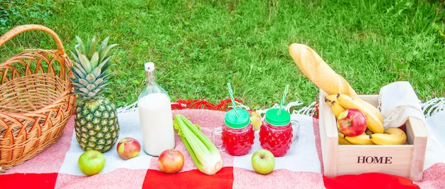 Picnic basket, fruit, juice in small bottles, apples, milk, pineapple summer, rest, plaid, grass copy space banner top view