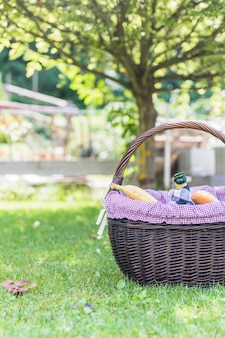 Picnic basket on green grass