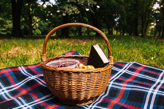Picnic basket on blanket over the green grass in the park