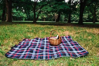 Picnic basket on checkered blanket over the green grass in the park