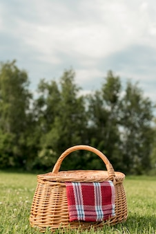 公園の芝生の上のピクニックバスケット