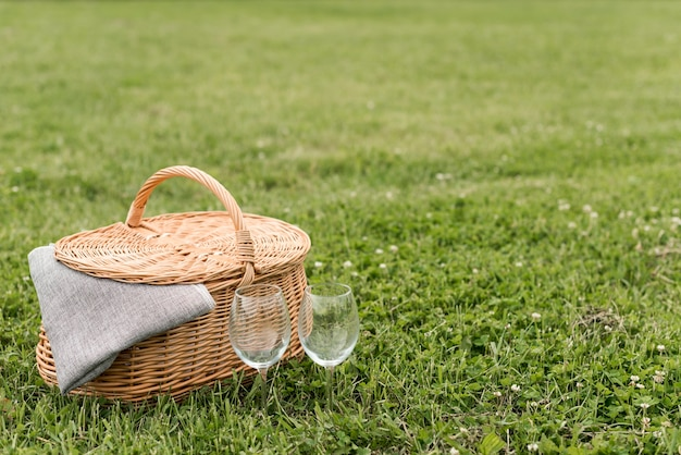 Picnic basket on park grass