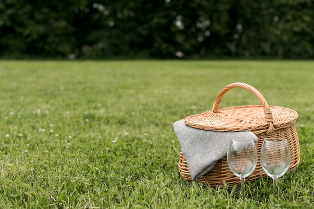 Picnic basket on park grass