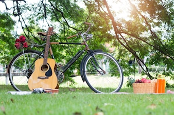 Picnic basket vacation leisure lifestyle concept