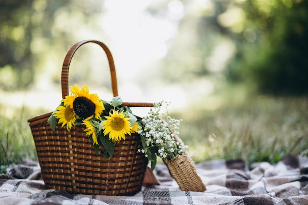 Picnic basket with fruit and flowers on blanket