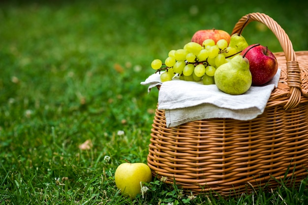 Picnic basket with fruit on it