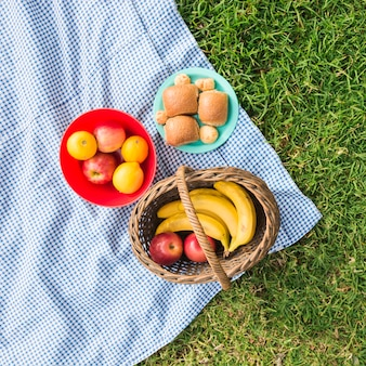 Picnic basket with fruits and bread on check blanket over green grass