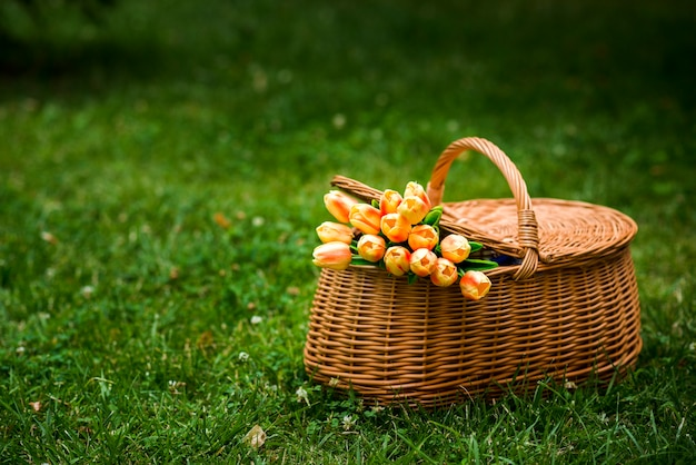 Picnic basket with a tulips bouquet