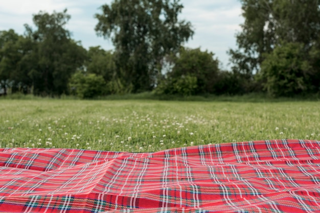 Picnic blanket on park grass