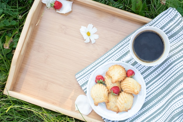 Picnic blanket with tray of berries and cookies