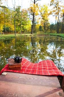 湖でのピクニック