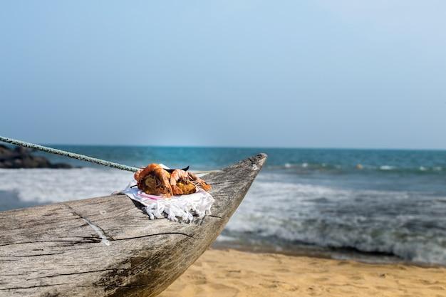 海でのピクニック