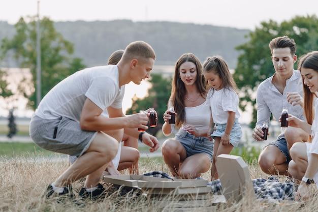 Пикник дружит с пиццей и напитками, солнечный день, закат, компания, веселье, пары и мама с малышом