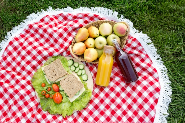 Picnic on the grass in the park. useful sandwiches with cheese, cucumber and tomatoes.
