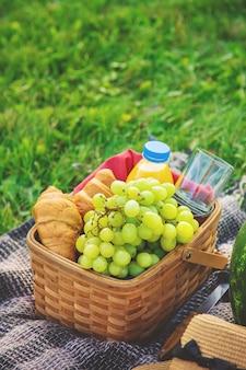 Пикник на природе из фруктов и арбуза