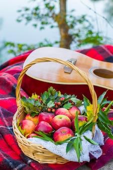 自然の中でのピクニック。川の近くでピクニック。川の近くの格子縞の毛布の籐のバスケットのギターと赤いリンゴ。