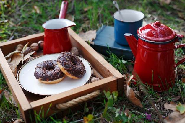 숲에서 피크닉입니다. 차와 도넛. 가을과 휴식