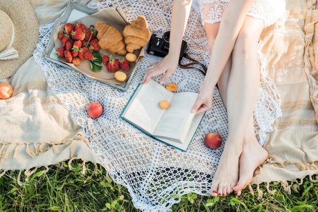 村の野原でのピクニック。帽子、レトロなカメラ。かごの中の新鮮な果物と自然の花。屋外で、休日にリラックス