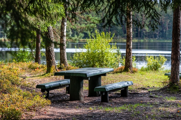 Picnic place in forest with tables and benches next to the lake. latvia. baltic.