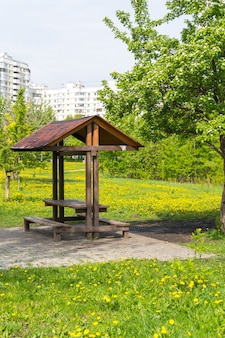 Picnic place in public park near apartment building, yellow dandelions meadow and spring tree around