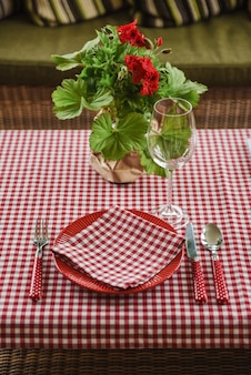 Picnic set. romantic date. family weekend. red cell. flowerpot. a frame for text or photo. covers for bottles. cutlery