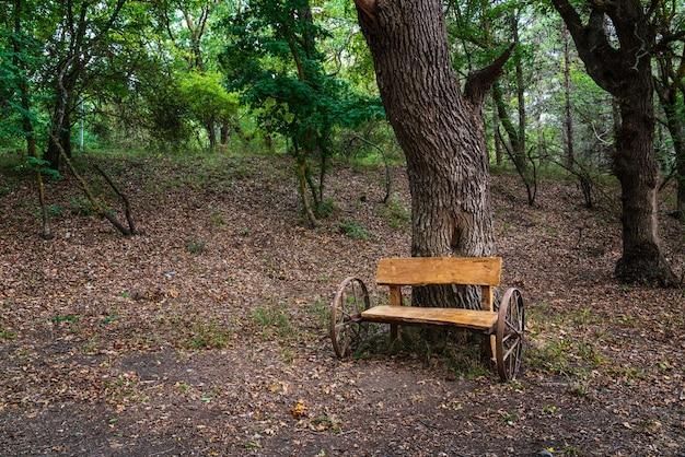 Место для пикника с деревянным столом и скамейками в лесу