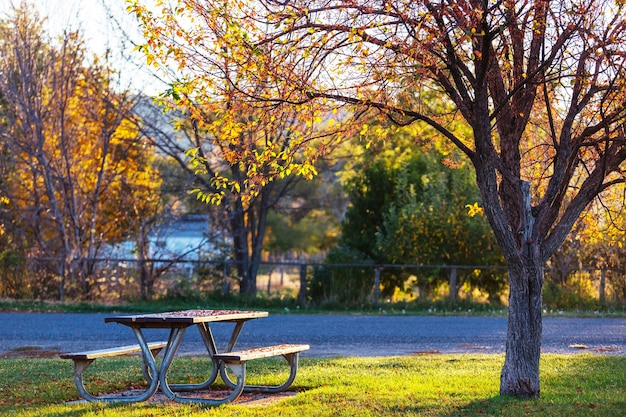 Стол для пикника на траве