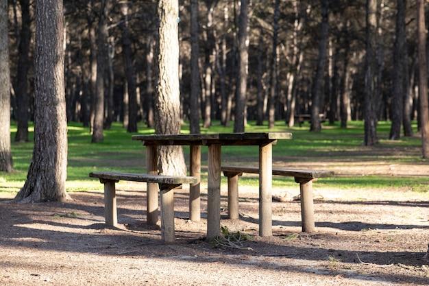 森の中のピクニックテーブル
