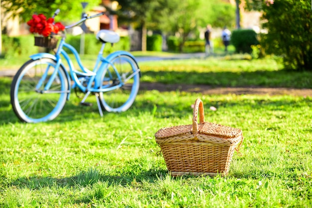 Picnic time. vintage bike garden background. rent bike to explore city. nature cycling tour. retro bicycle with picnic basket. bike rental shops primarily serve typically travellers and tourists.