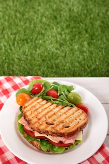 Picnic toasted ham and cheese sandwich on outdoor table
