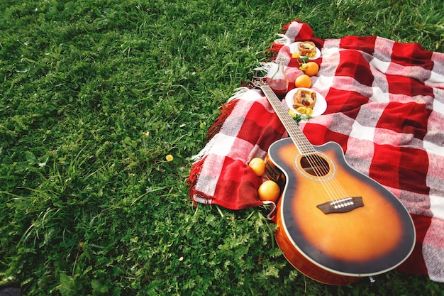 Picnic with guitar music on grass