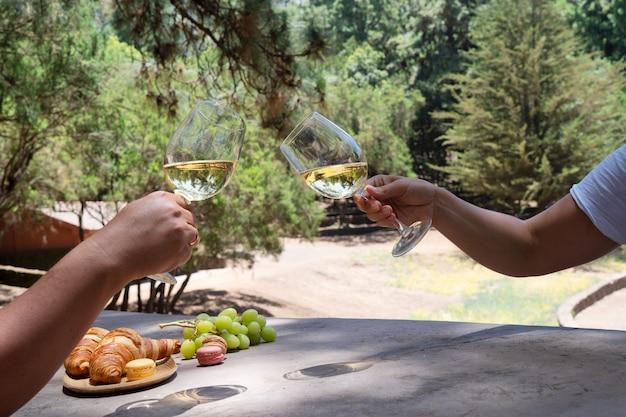 Пикник с вином и круассанами, парное развлечение с бокалами