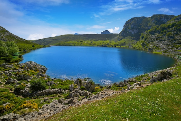 Picos de europa enol lake in asturias spain