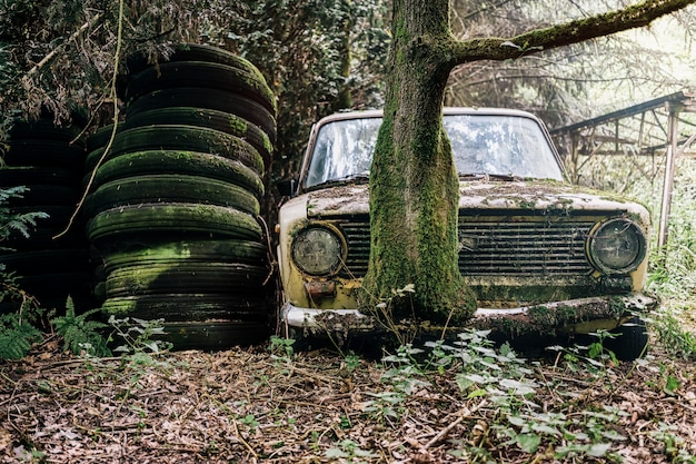 Picture of a derelict and abandoned car in a forest