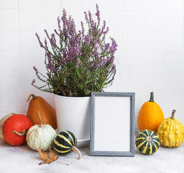 흰색 타일 배경 위에 테이블에 액자와 호박 장식. 가을 시즌 인사말 카드입니다.
