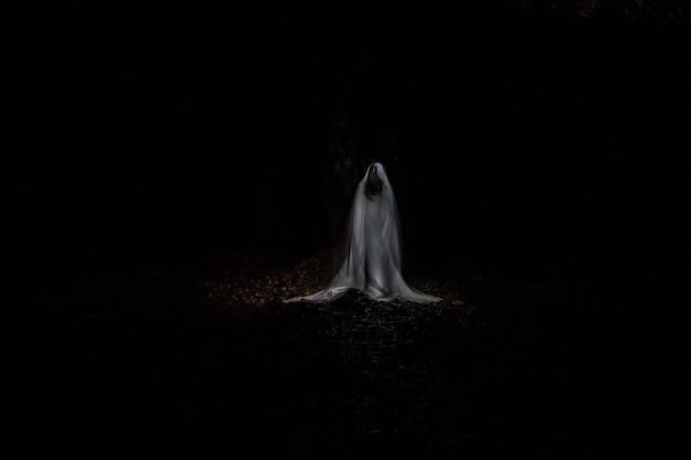 Картина с привидением посреди леса в полной темноте, сделанная в технике светописи.