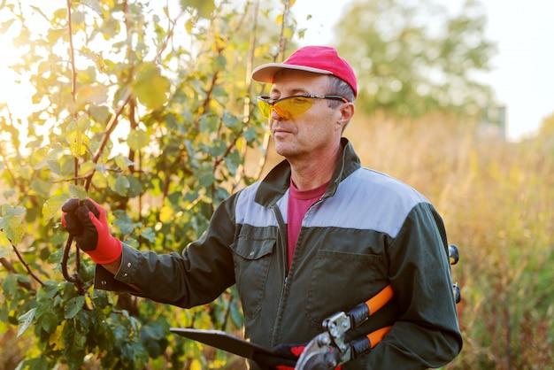 彼の手に大きな園芸用はさみで木に制服で立っている成人男性の写真。生態学の概念。庭で晴れた秋の日。