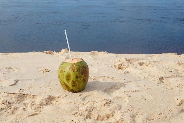 열대 해변에 있는 신선한 코코넛 사진