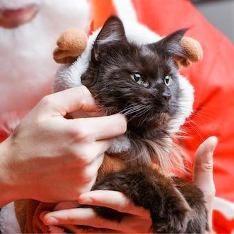 サンタクロースの手に鹿の衣装を着た新年の黒猫の写真
