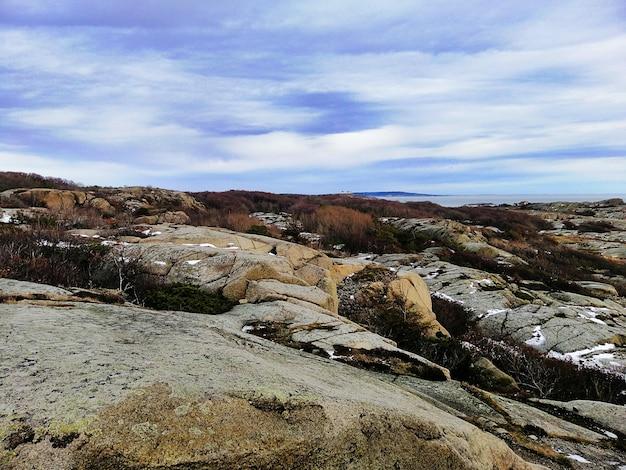 ノルウェーの夕方の曇り空の下で枝と雪に覆われた岩の写真