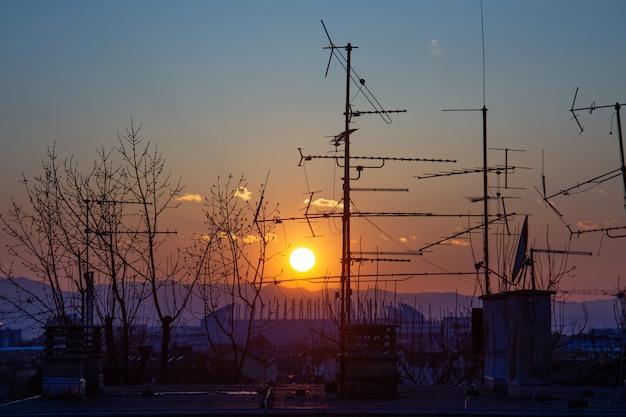 クロアチアのザグレブで日没時に屋根の上のツリーとテレビのアンテナシルエットの写真
