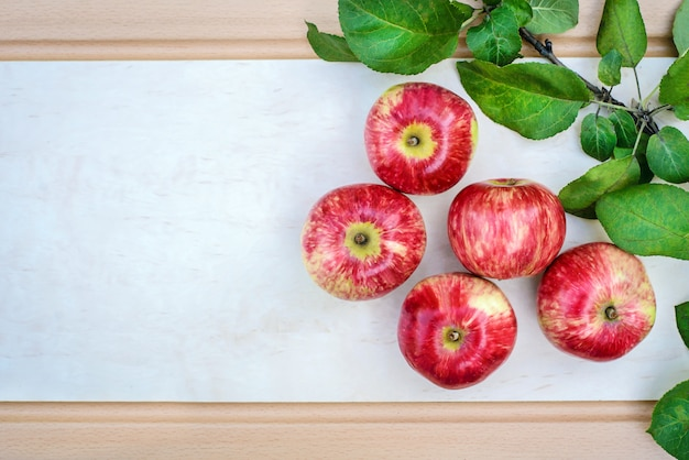 Picture of red apples on a light background