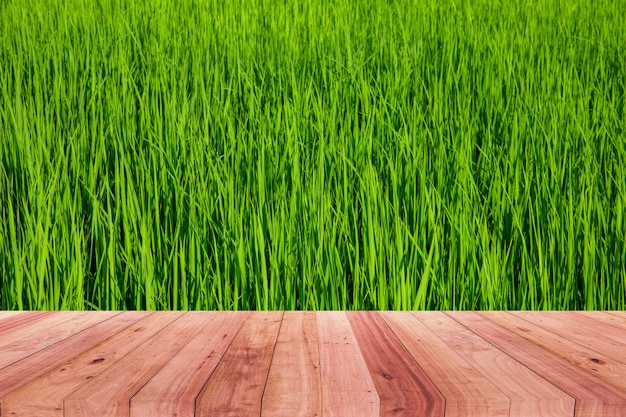 A picture of a wooden desk in front of an abstract background of green rice.