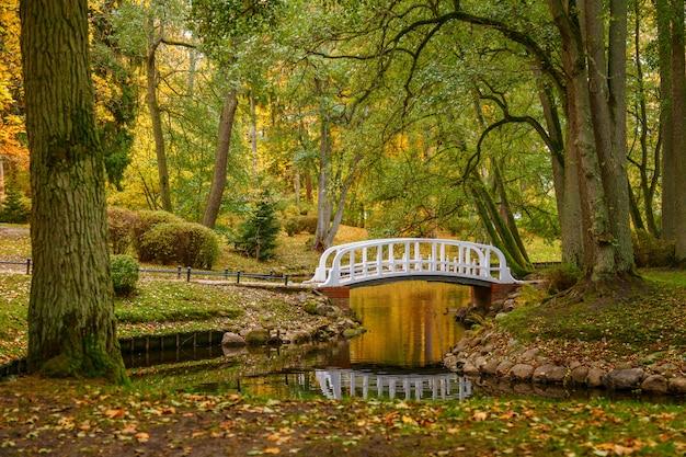リトアニアのパランガにある植物園の美しい秋の風景。池の静かな水、白い橋、古い緑と黄色の木々。