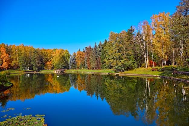 Живописный осенний пейзаж озера и деревьев