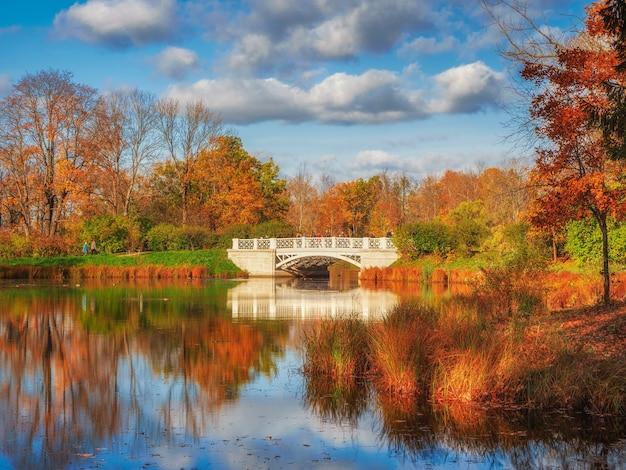 池のある絵のように美しい秋の風景。美しい秋の土地